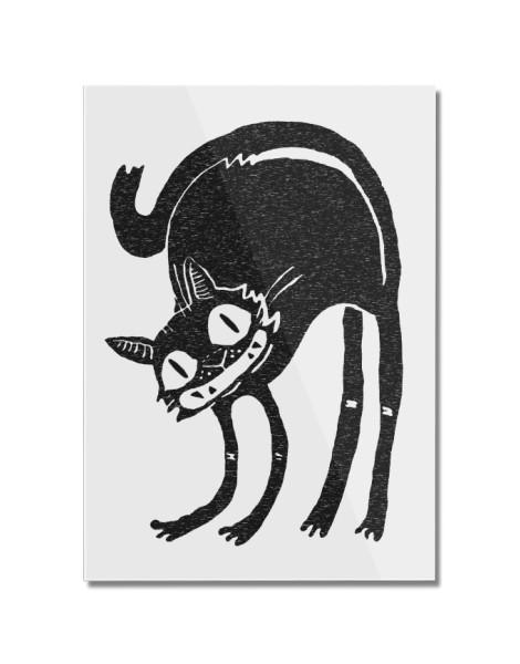 Black Cat Hero Shot