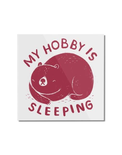 my hobby is sleeping Hero Shot