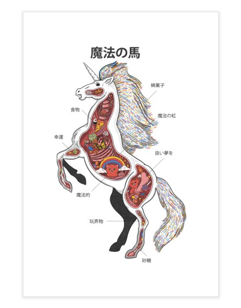 Unicorn Anatomy Hero Shot