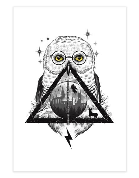 Owls and Wizardry Hero Shot