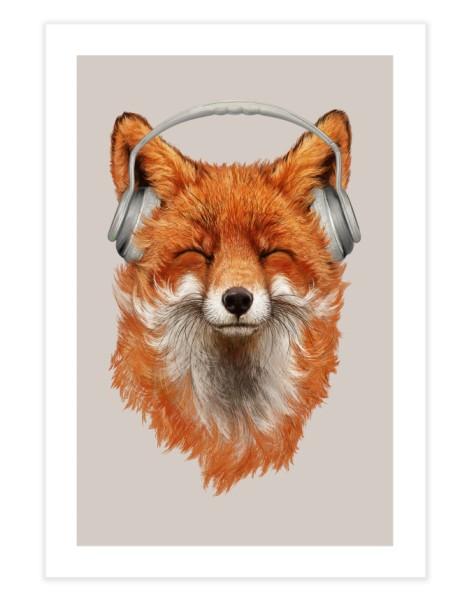 The Musical Fox Hero Shot