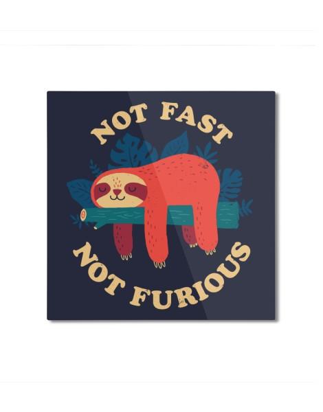 Not Fast, Not Furious Hero Shot