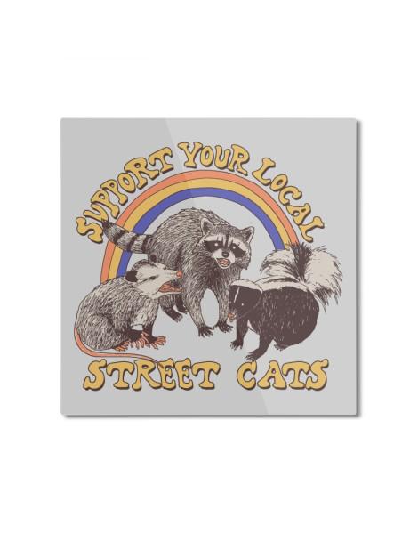 Street Cats Hero Shot