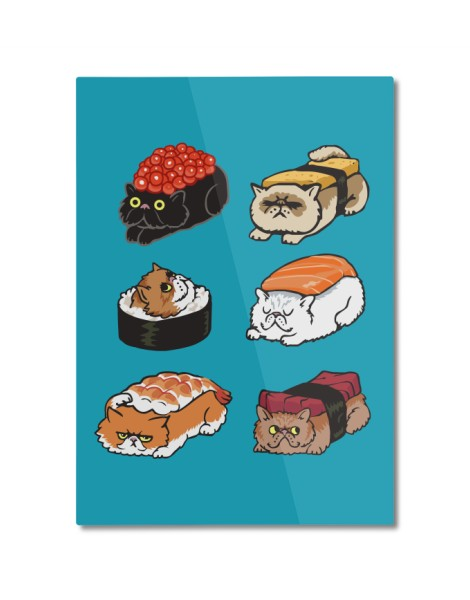 Sushi Persian Cat Hero Shot