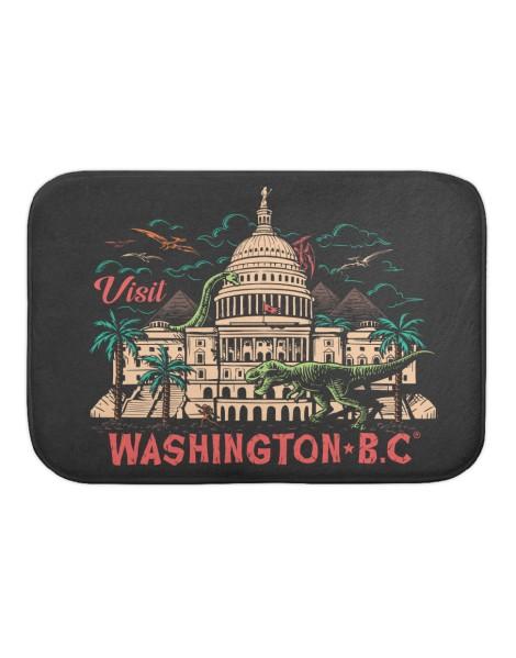 Washington B.C. Hero Shot