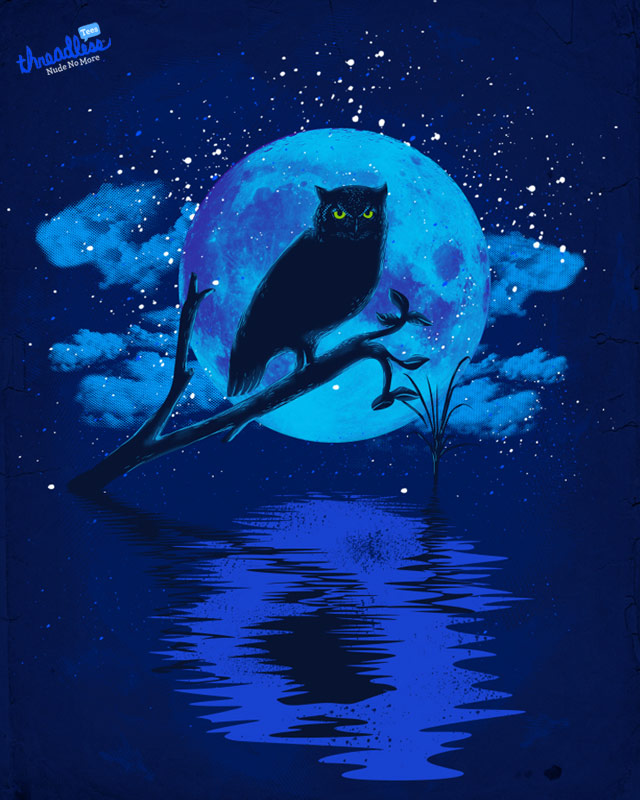Mystic Owl by dandingeroz on Threadless