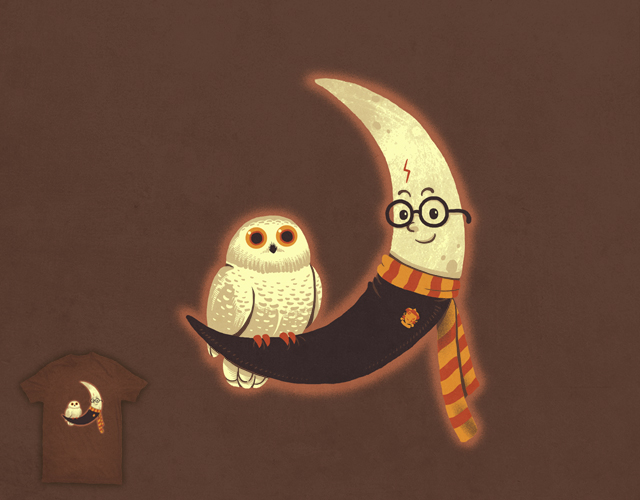 Magic Owl With Moon