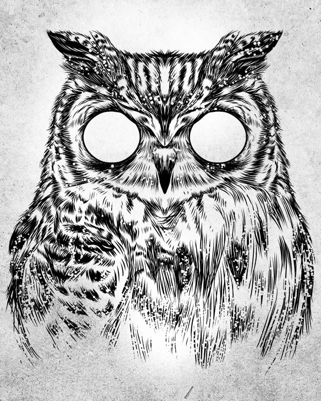Owltical Illusion